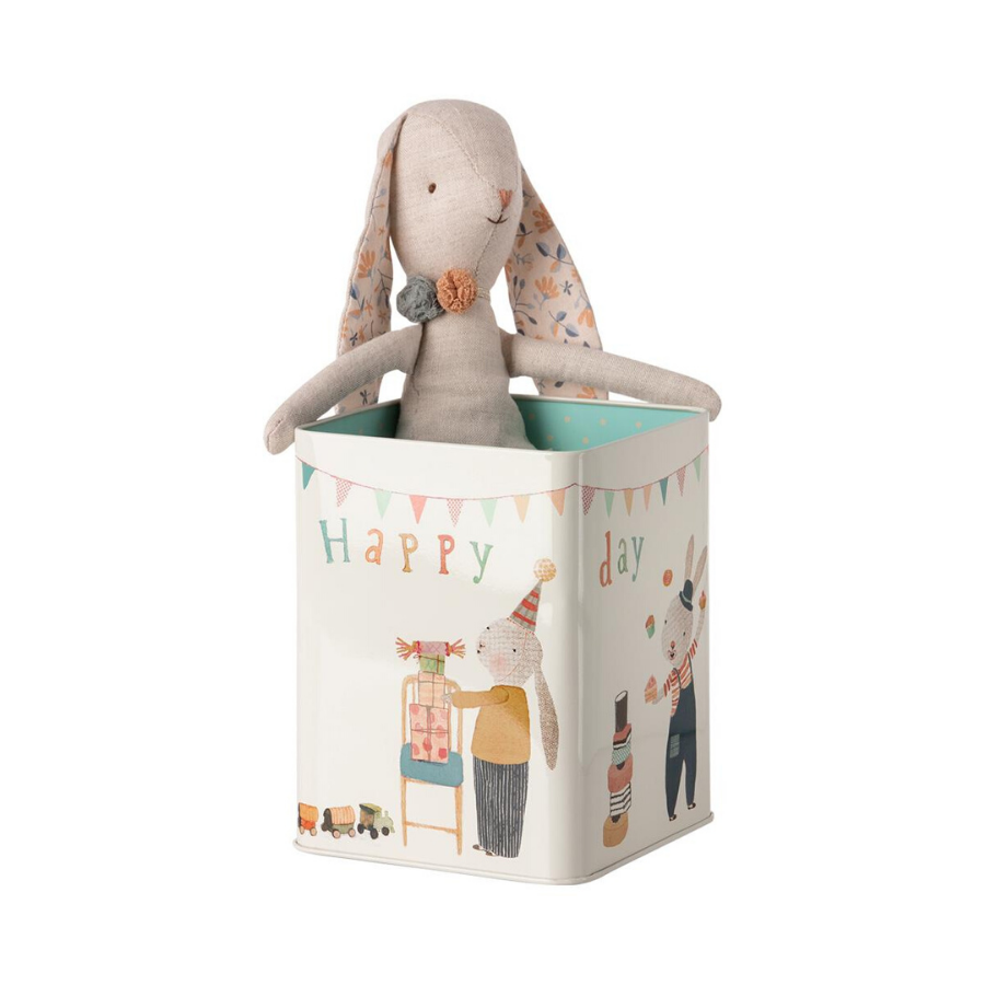 Happy Day Bunny In Box | Medium