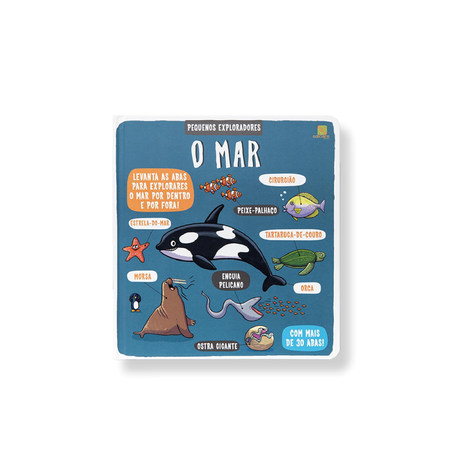 Pequenos Exploradores – O Mar